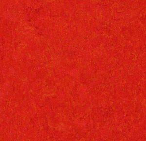 333131 scarlet thumb