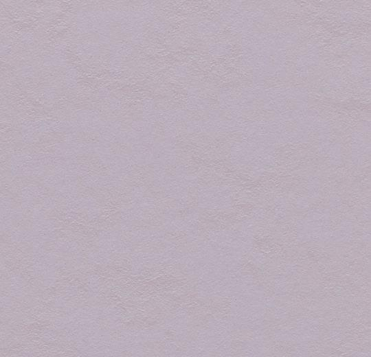 333363 lilac