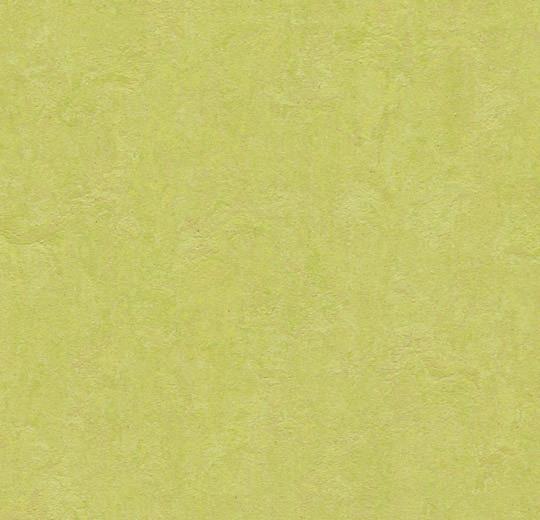 333885 spring buds