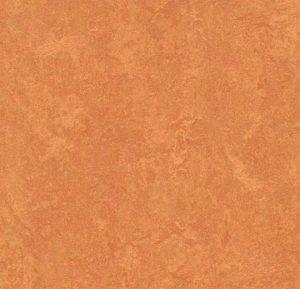 3825 African desert thumb