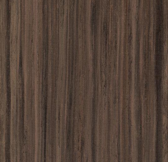 te5229 fresh walnut