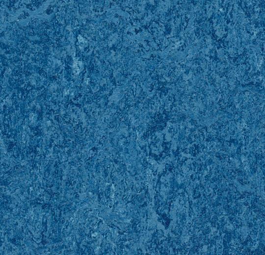 3030 blue
