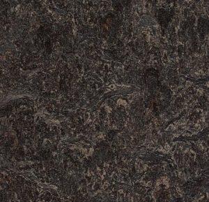 3236 dark bistre thumb