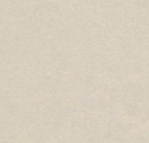 3257 edelweiss thumb
