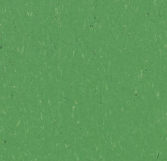 3647/364735 nettle green