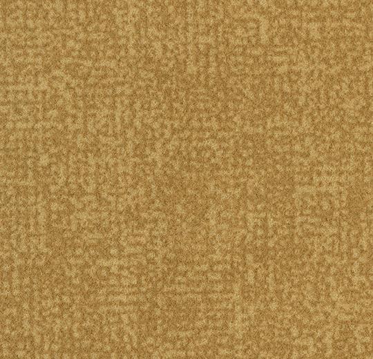 s246013/t546013 amber