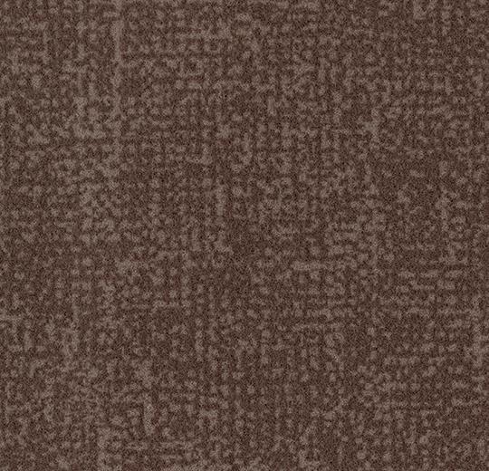 s246015/t546015 cocoa