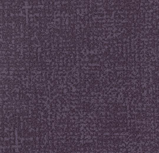 s246016/t546016 grape