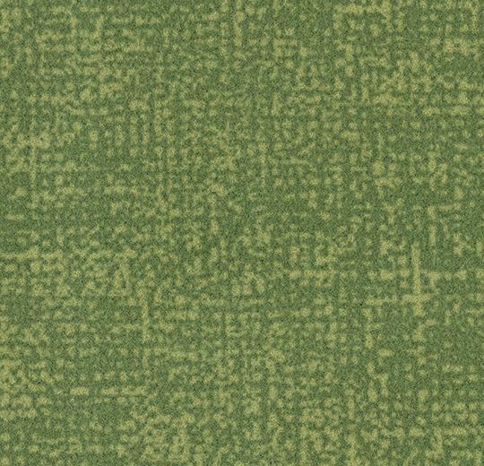 s246019/t546019 citrus