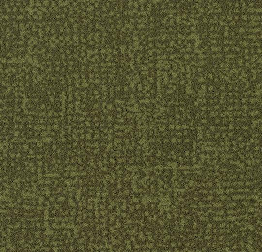 s246021/t546021 moss