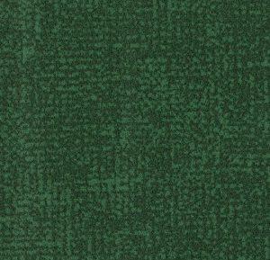 s246022/t546022 evergreen thumb