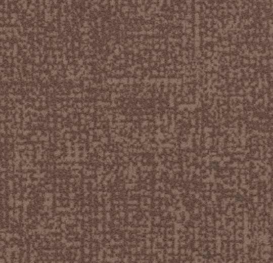 s246029/t546029 truffle