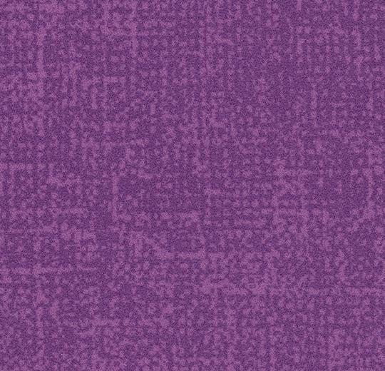 s246034/t546034 lilac