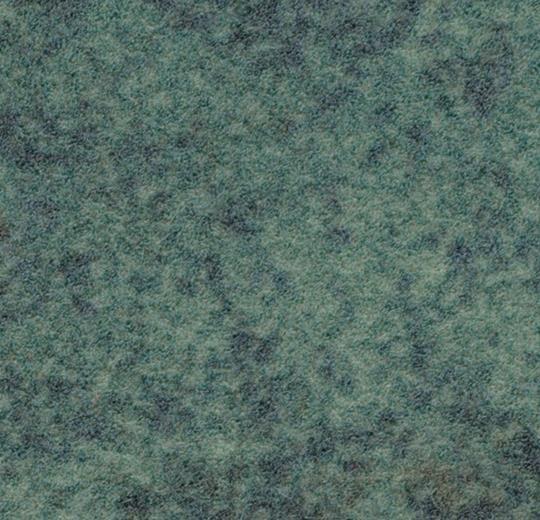 s290009/t590009 moss