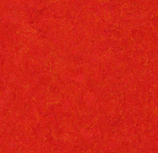 3131 scarlet
