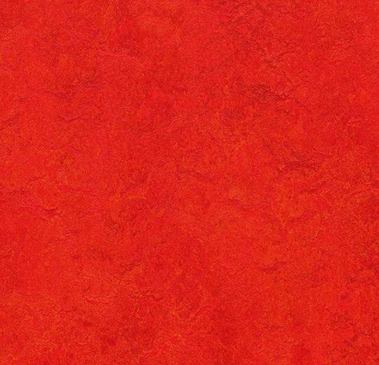 t3131 scarlet