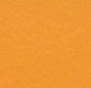 t3354 pumpkin yellow thumb