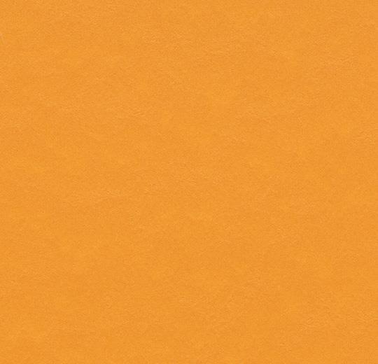 t3354 pumpkin yellow