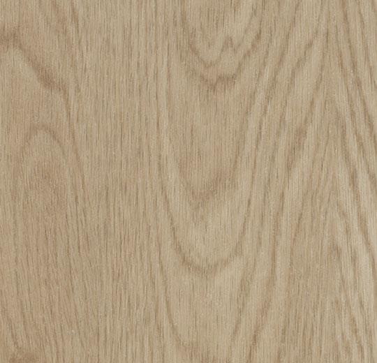 w60064 whitewash elegant oak
