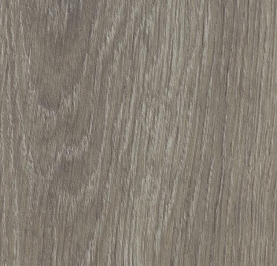 w60280 grey giant oak