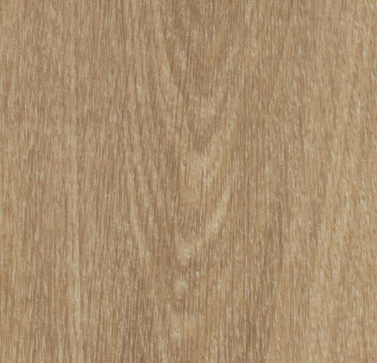 w60284 natural giant oak