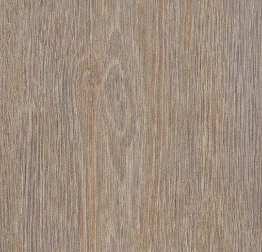 w60293 steamed oak