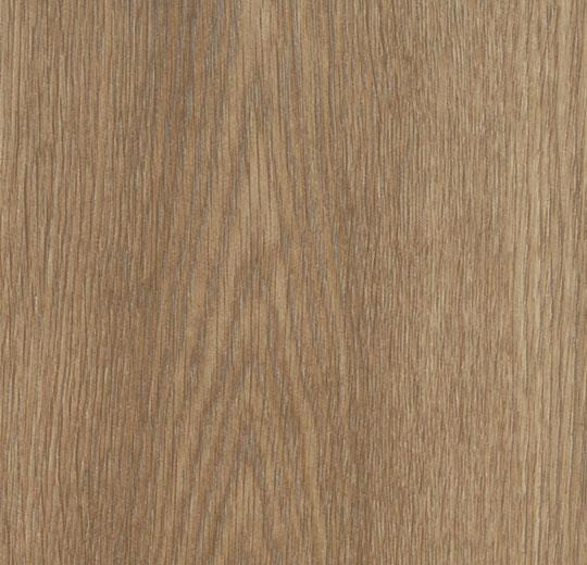 w60373 golden collage oak