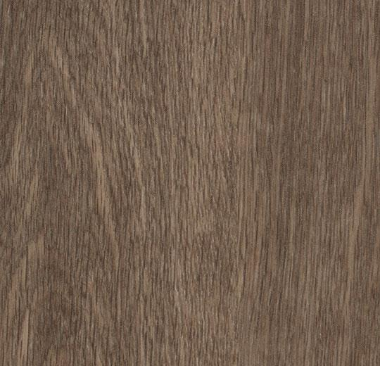 w60376 chocolate collage oak