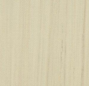 t3575 white cliffs thumb