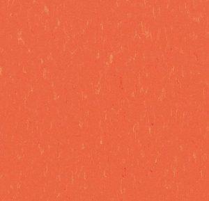 3651/365135 zinnia thumb
