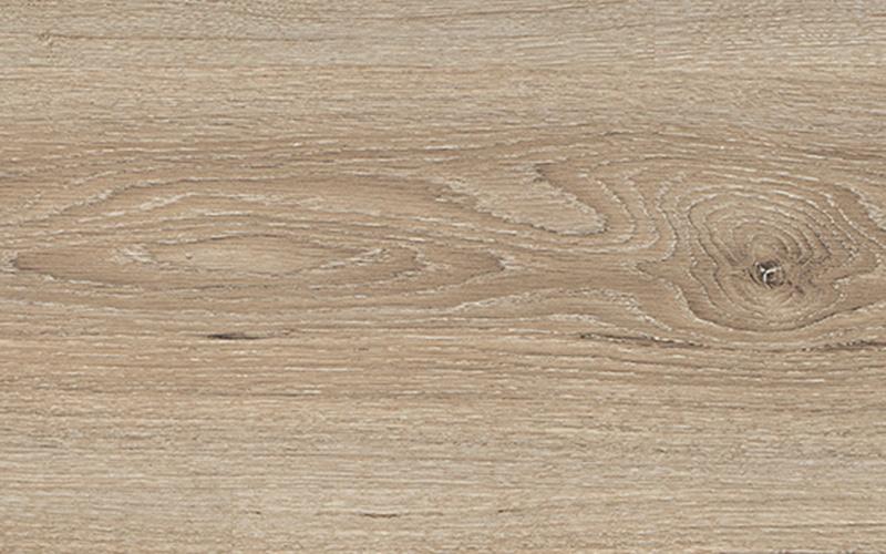 Дуб Амьен Светлый (Oak Amiens) - H 2730