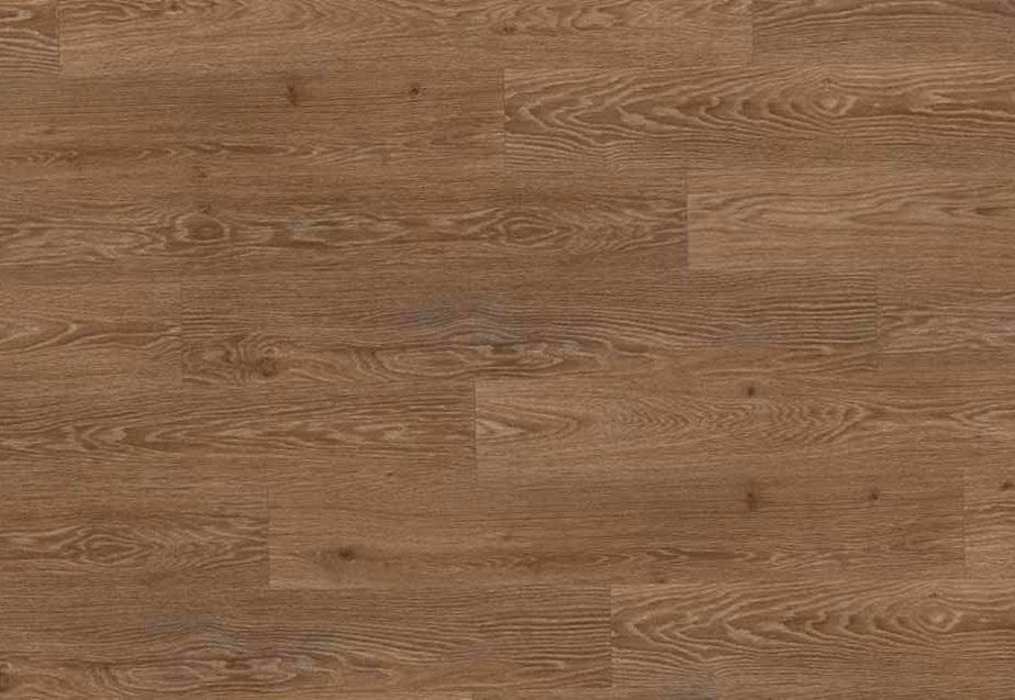 Дуб Чезена - H 2852 (Oak Cesena)