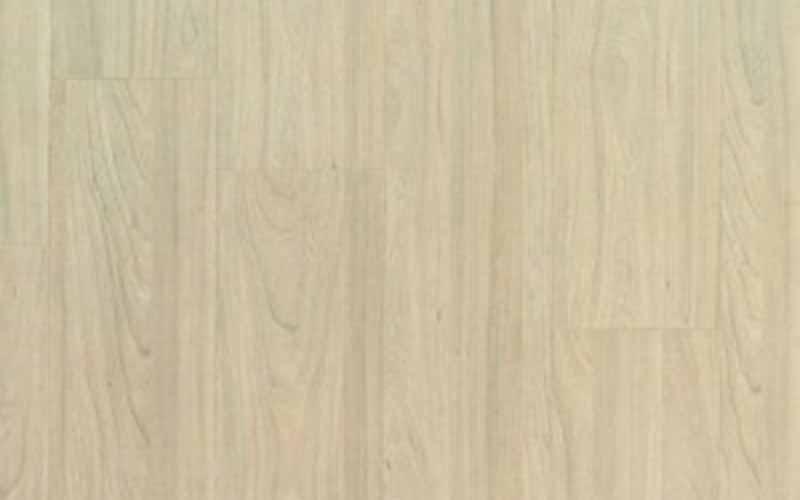 Вяз Ванильный (Vanilla Elm) 5020